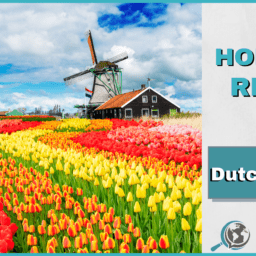 An Honest Review of DutchPod101 With Image of Dutch Tulip Field