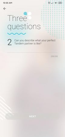 Screenshot from the Tandem profile set-up page asking the user to describe their ideal Tandem partner.