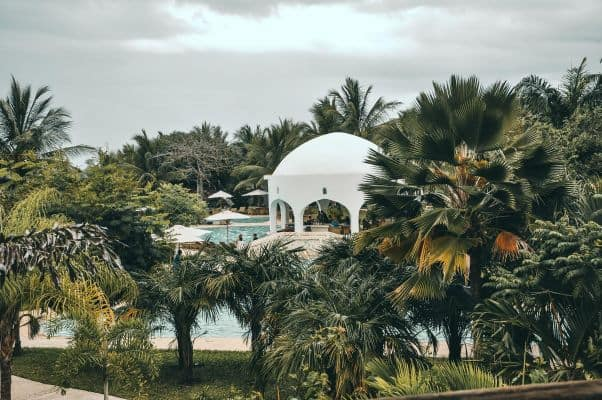 An outdoor swimming pool partially obscured by trees in Mombasa